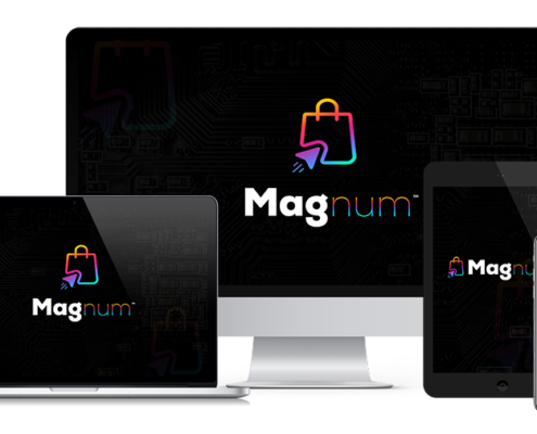 Magnum-All in one store builder